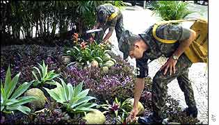 Soldiers search for potential mosquito breeding areas in Ipanema