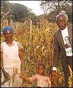The Gobo family, central Zimbabwe
