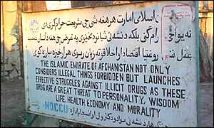 Taleban sign banning opium cultivation
