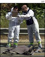 Israeli forensic experts by body of one of the dead
