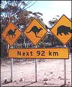 Road signs in Australia's outback