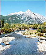 River bed in Kananaskis Country, Alberta, Canada