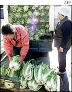 Market trader selling cabbages