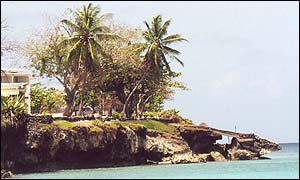 coastal Tobago