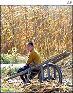 Boy in rural China