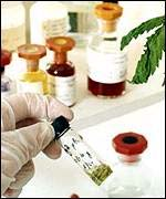 Laboratory tests on cannabis