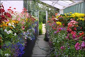 Greenhouse, Castle of Mey