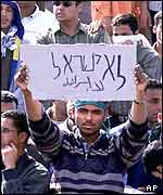 An Egyptian student brandishes a sign saying