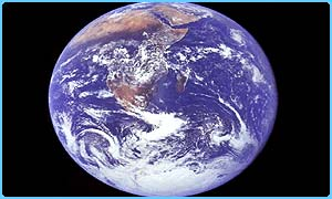 Don't worry - it's not THIS fat!