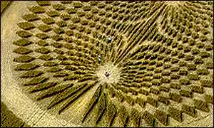 People in crop circle, Circlemakers photo