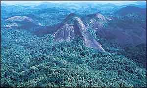 Aerial view of the Tumucumaque mountains (Kitt Nascimento/WWW-Brazil)