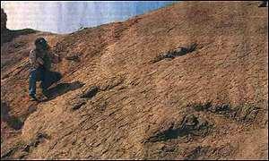 Huellas de dinosaurio en Perú