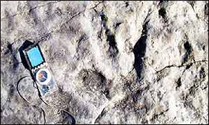 Dinosaur footprint, thought to be left by a megalosarous