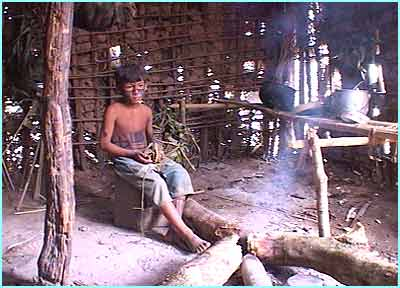 The Awa tribe don't harm the forest. They build their huts using the forest trees and hunt their food in the jungle