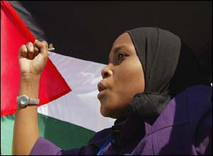 Pro-Palestinian demonstrator ( photograph courtesy of AP)