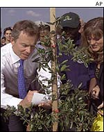 Tony Blair plants a tree in Alexandra