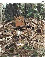 A man from the Papua New Guinea village of Sissano looks over the damage from atop a pile of debris, July 1998.