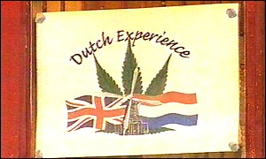 Dutch Experience cafe