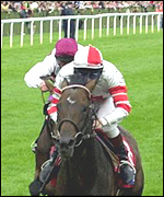 Millenary winning the 2000 St. Leger Stakes