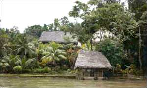 Maya indians who live along the Rio Dulce go down with malaria and other insects-borne diseases.