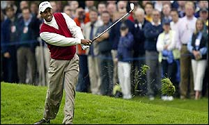 Tiger Woods in action at The Belfry