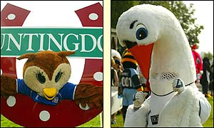 Last year's runner-up Chaddy the Owl and the menacing figure of Cyril the Swan before the race