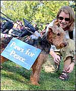 A dog wears a 'Paws for Peace'