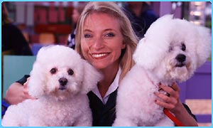 A couple of Bichon Frises with TV vet Trude Mostue