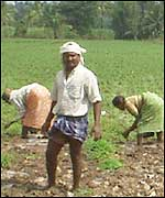 Farmers at Mandya in Karnataka