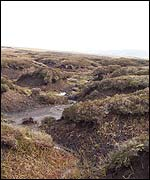 Peat bog near the exact centre of Great Britain