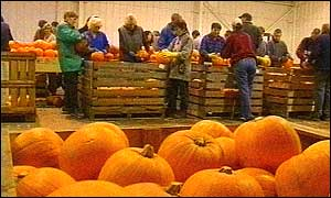 Processing pumpkins