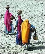 Women in search of water in Rajasthan