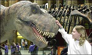 T-Rex at the National History Museum