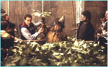 Behind the scenes on the movie shows director Chris Colombus explaining about the mandrakes