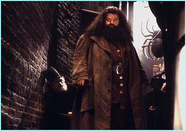 Hagrid also gets more to do