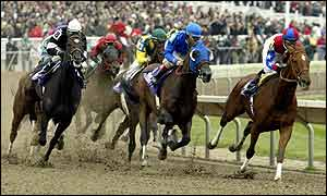 Azeri, ridden by Mike Smith, leads the field at the Breeders' Cup Distaff