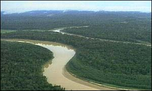 Τεράστιες εκτάσεις τροπικών δασών