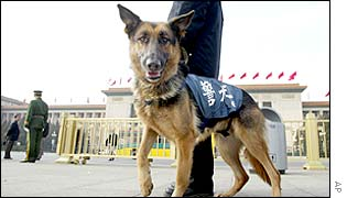 A police dog waits with its handler in Beijing's Tiananmen Square, as a military policeman questions people entering the square (left)