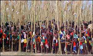Swazi reed dance (photo: Chris Hughes)