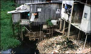 A favela, or shanty town in Manaus