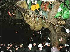 Protesters in tree house