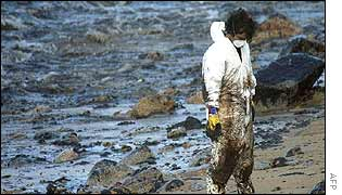 A volunteer stands on an oil covered beach