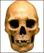 La calavera tiene más de 13.000 años