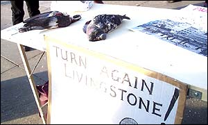 Dead pigeons shown during the protest