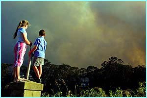 Children from the suburb of East Hills in Sydney watch thick smoke coming from bushfires in the area.
