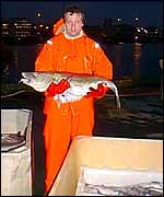 Fisherman holds cod   Alex Kirby