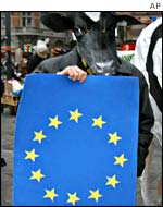 A protester at the EU summit in Copenhagen