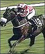 David's Lad won the Irish National in 2001