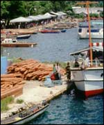 Timber yard in Solomon Islands