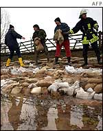 Emergency workers sandbagging a river dyke in Germany
